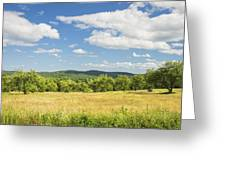 Apple Trees And Hay Field In Summer Maine Greeting Card