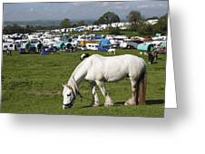 Appleby Horse Fair Greeting Card