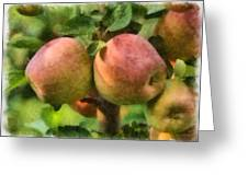 Apples Painterly Greeting Card