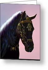 Arab Horse Greeting Card