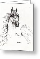 Arabian Horse Drawing 41 Greeting Card