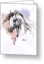 Arabian Horse Ink Drawing 1 Greeting Card