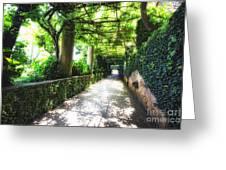 Arbor Path In Ravello Greeting Card