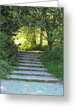 Arboretum Steps Greeting Card
