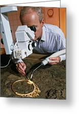 Archaeologist Cleaning A Golden Celtic Necklace Greeting Card