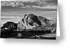 Arches Black And White Greeting Card