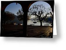 Archs And Trees Greeting Card