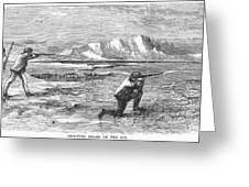 Arctic: Bear Hunting, 1871 Greeting Card