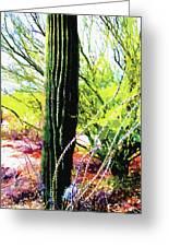 Arizona Catcus Greeting Card