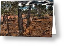 Arizona Fence And Desert Greeting Card