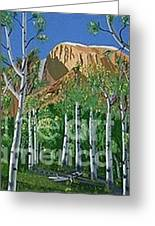 Arizona High Country Greeting Card