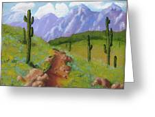 Arizona Trails Greeting Card
