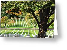 Arlington National Cemetery In The Fall  Greeting Card