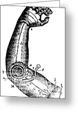 Artificial Arm Designed By Ambroise Greeting Card