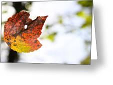 Artsy-fartsy Autumn I Greeting Card