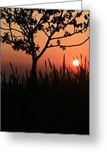As It Sets Greeting Card