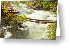 As The River Flows Greeting Card