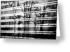 As The Swamp Sleeps Greeting Card by Empty Wall
