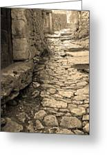 Ascent In Beynac France Greeting Card