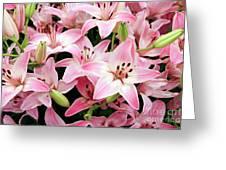 Asiatic Lily (lilium 'vermeer') Greeting Card