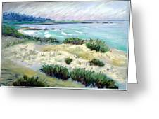 Asilomar Beach Greeting Card