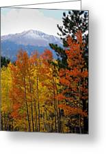 Aspen Grove And Pikes Peak Greeting Card