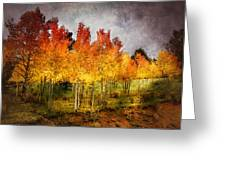 Aspen Grove In Autumn Greeting Card