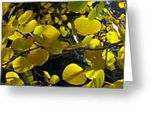 Aspen Leaves 1 Greeting Card
