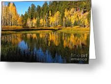 Aspen Mirror Greeting Card