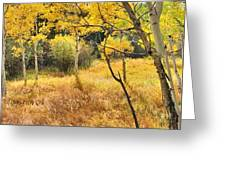 Aspens Panorama Greeting Card