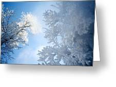 Assiniboine Park, Winnipeg, Manitoba Greeting Card by Keith Levit