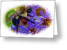 Asters With Dew And Bumblebee Greeting Card