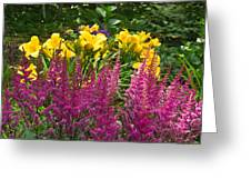 Astilbe And Lilies Greeting Card