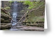 At The Falls Greeting Card