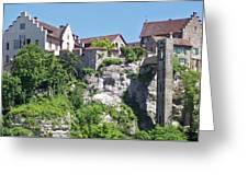 At The Rhine Falls Greeting Card