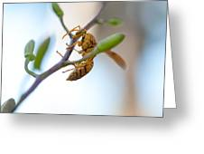 At Work. Busy Bee Greeting Card