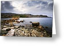 Atlantic Coast In Newfoundland Greeting Card