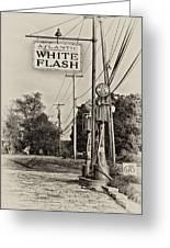 Atlantic White Flash Greeting Card