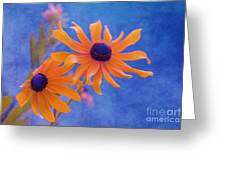 Attachement - S11at01d Greeting Card by Variance Collections