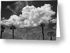August Clouds Palm Springs Greeting Card