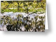 August Reflections Greeting Card