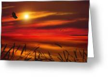August Sunset Greeting Card by Tom York Images