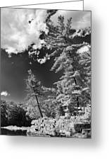 Ausable Chasm 1621 Greeting Card