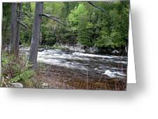 Ausable River 5252 Greeting Card