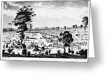 Australia: Gold Rush, 1851 Greeting Card