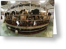 Automatic Milking Machine Greeting Card by Photostock-israel