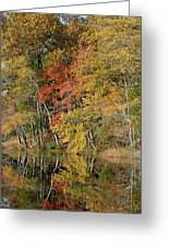 Autumn 45 Greeting Card