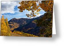 Autumn Above Aspen Greeting Card