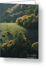Autumn Arrival Greeting Card