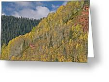 Autumn Aspens San Juan Mountains Greeting Card